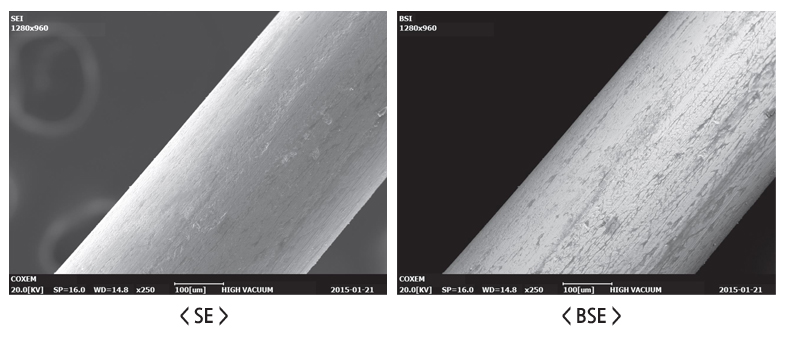 Comparing SE and BSE images for Desktop SEM